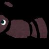 室内にアリが発生した時の駆除方法まとめ!侵入防止から駆除までまとめて紹介します